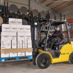 wozki-widlowe-hyundai-diesel--2500-3000-3300-3500kg-009